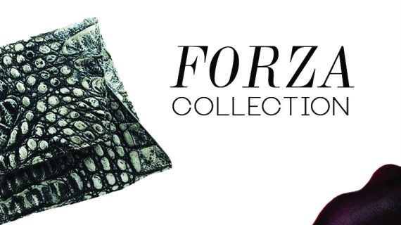 House Of Sheens Latest Collection: FORZA
